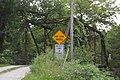 Hawkeye Creek Bridge from west.jpg