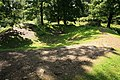 Hembury Woods Fort - geograph.org.uk - 1462069.jpg