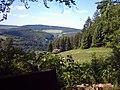 Herrlicher Blick von der Heide in Richtung Gräfenthal - panoramio.jpg