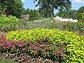 Hillwood Gardens in July (14608821660).jpg