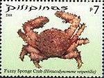 Hirsutodynomene vespertilio 2008 stamp of the Philippines.jpg
