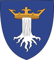 Historical Burzenland Brasov CoA.png