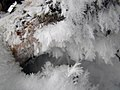 Hoar Frost at Seney National Wildlife Refuge (16582248412).jpg