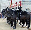 Horse guards 2016 (1).jpg