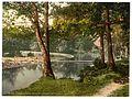 Horseshoe Falls, Berwyn Valley, Llangollen, Wales-LCCN2001703518.jpg