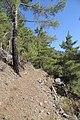 Horteri Nature Trail - panoramio (5).jpg