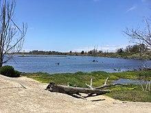 Huntington Beach, California - Wikipedia