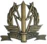 IDF C4I Corps Hat Badge .png