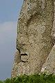 Il volto Giove sull'ala dell'Aquila.jpg