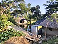 Images from Bali Island Sunderbans IMG 20171112 071222.jpg