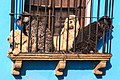 In Antigua Guatemala-are they gaurd dogs…or just people watchers? (6849903828).jpg
