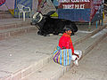 India-5244 - Flickr - archer10 (Dennis).jpg