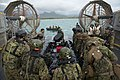 International partners participate in Amphibious Assault Exercise during RIMPAC 2014 140727-N-WX378-051.jpg