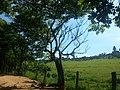 Itupeva - SP - panoramio (2999).jpg