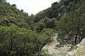J35 822 Dolina Blaca.jpg
