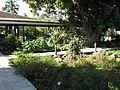 Jardin d'atea.jpg
