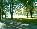 Jedna z alejek Parku Moczydło - panoramio.jpg