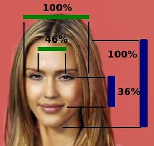 Averageness - Image: Jessica Alba Face Proportions