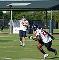 John David Booty to Chris Henry - Houston Texans.jpg