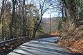 Johnstown late November - panoramio (10).jpg