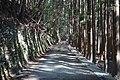 Kagamicho Mugawa, Konan, Kochi Prefecture 781-5468, Japan - panoramio.jpg