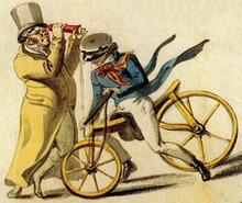 Fahrrad Und Fashion Shop Illertissen