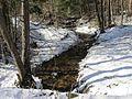 Kamshilovka River IMG 2235.jpg