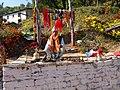 Kartikeya Gadi Aladi Doti Nepal.jpg