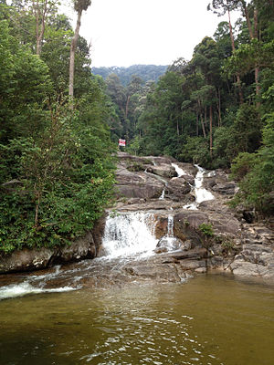 Mount Ophir - Waterfall on Gunung Ledang