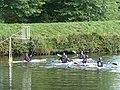 Kayak-polo Pontivy 01.jpg