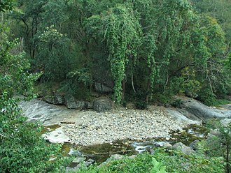 Vattaparai Falls - Stream in Keeriparai Reserve Forest