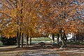 Kefermarkt Schloss Weinberg Park-4891.jpg