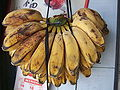 Kepok banana Indonesia.JPG
