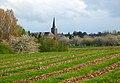 Kerk van Gingelom - panoramio.jpg