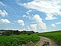 Khalep'ya, Kyivs'ka oblast, Ukraine, 08741 - panoramio (13).jpg
