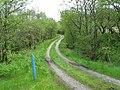 Kintyre Way Walk. - geograph.org.uk - 449697.jpg