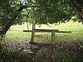 Knoll Wood looking towards Aldington Knoll after the rain - geograph.org.uk - 413319.jpg