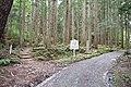 Koya Pilgrimage Routes(Nyonin-michi)9.jpg