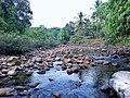 Kuttiyadi River,Chempanoda,Kozhikode,Kerala.jpg