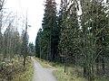 Lähdepuisto - panoramio.jpg