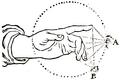 Léonard de Vinci - Traité élémentaire de la peinture, 1803 F35.png