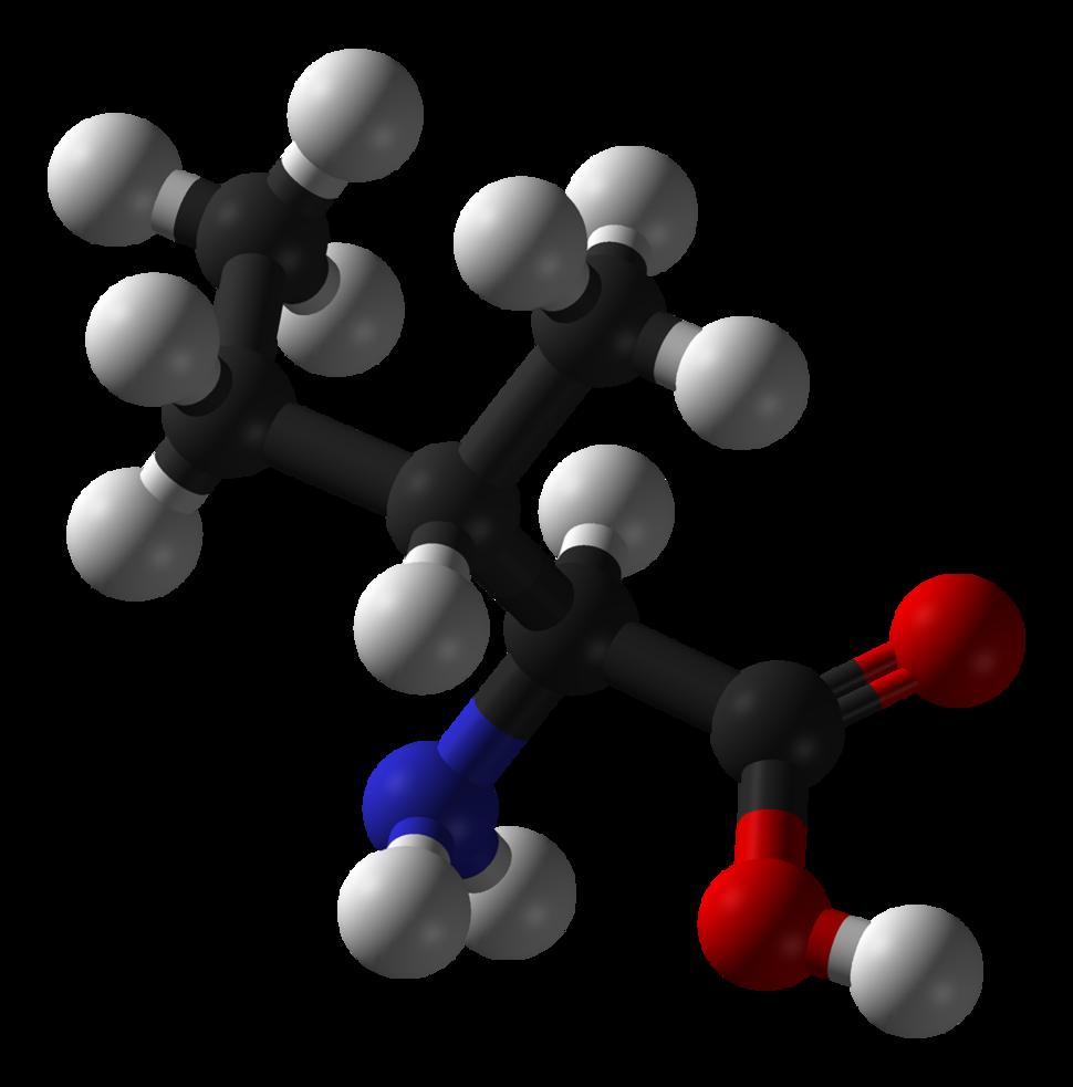 L-isoleucine-3D-balls