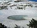 Lacul Ciobanu - panoramio.jpg