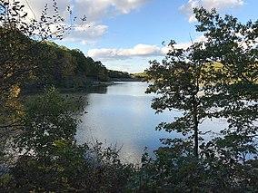 Lacy Lake.jpg