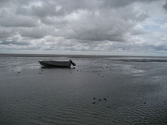 Hulun Lake - Mudflats and boat near the lakeshore.