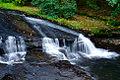 Lake Creek Falls (Lane County, Oregon scenic images) (lanDB4012).jpg