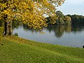Lake at Clumber Park - panoramio.jpg