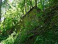 Landschaftsschutzgebiet Gestorfer Lößhügel - Steinbruch (12).JPG