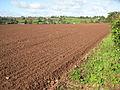 Large arable field SE of Llangarron - geograph.org.uk - 998421.jpg