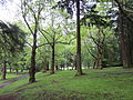 Laurelhust Park, Portland - May 21, 2012.JPG